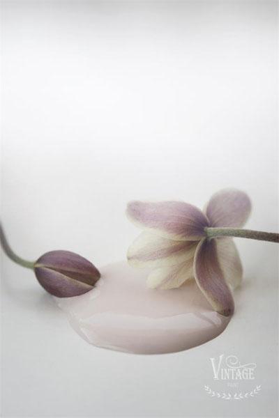 JDL Vintage Paint Antique Rose